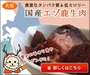国産エゾ鹿生肉